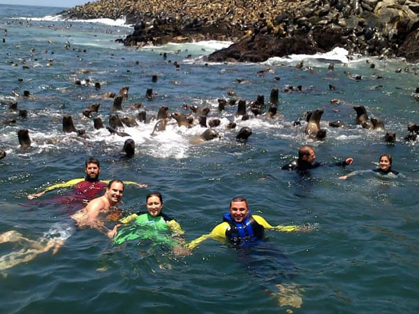 Portada de Swimming with sea lions in Callao