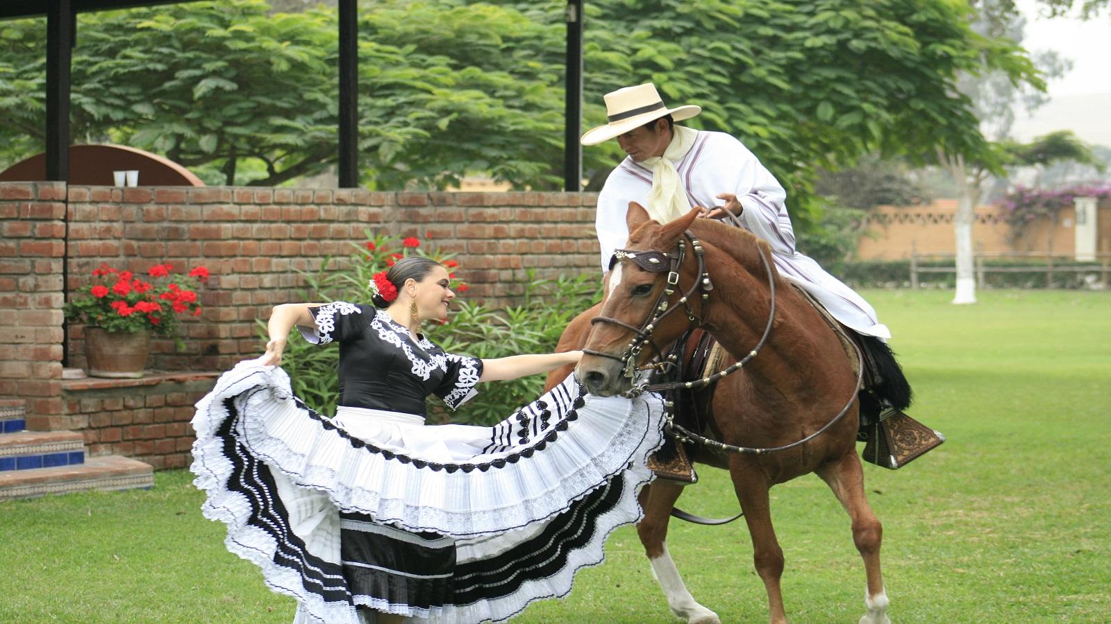 visit the show  u0026quot caballo de paso u0026quot